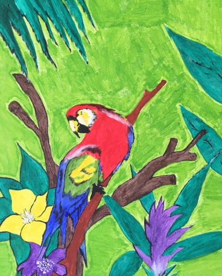 Parrot Lewis Bernard Young
